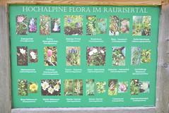 DSC_3825 (d90-fan) Tags: rauris raurisertal natur alpen salzburgerland sterreich nationalpark npht hohe tauern wandern krumltal seidlwinkeltal