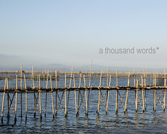 Bamboo walk on stilts [1] (Reni Orayani) Tags: lake photography philippines laguna lagunadebay metromanila athousandwords reni fishpen muntinglupa orayani renatoorayani reniorayani legazpisundaymarket baklad