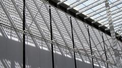 Museum Patio (danieljsf) Tags: light shadow lines metal curves naturallight californiaacademyofsciences flickrchallengegroup