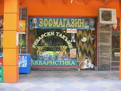 Pet store!
