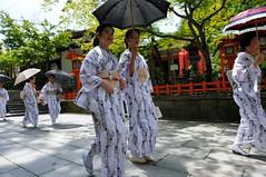 (Tamayura) Tags: japan nikon kyoto maiko geiko gion jul kansai d3 yasaka 2011 2470mmf28g osendo miyabikai 201107051036100