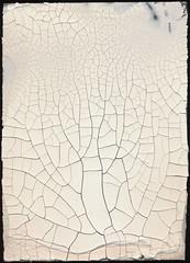Crackle_2O (jfrancis) Tags: wood vintage paint antique patterns scratches plaster worn backgrounds cracks distressed crackle tectures texturemaps