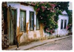 Igatu - Bahia - Brasil (silwittmann) Tags: street flowers brazil urban brasil architecture decay perspective bahia scanned oldcity oldhouses chapadadiamantina igatu quietstreet arethesebuildings silwittmann rotadosdiamantes