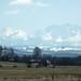 PL.2012.04.09.Krakow-Tatra.DSCF4953
