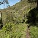 Percorso escursionistico nei dintorni di Baños