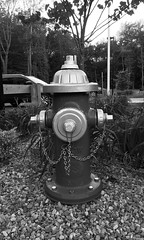 Fire hydrant (nikitalesnik) Tags: iphone6 phone iphone chain rocks playground park grayscale white black hydrant fire