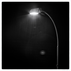 270/366 black white day (tideloon) Tags: entwicklung 3662016 366the2016edition 36620216 square blackandwhite blackwhiteday hexanon konica 200mm fujifilm fujifilmxt1 night rain light