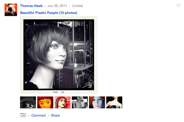 What a Picasa Album Looks Like When Shared on Google+
