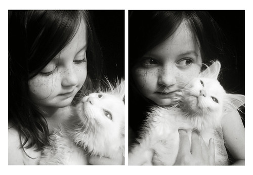 KittenConspiracybw