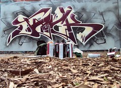For My Little Man... (Dirty Harry Palms GM) Tags: palms graffiti gm brisbane crew tues serch ironlak