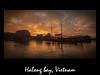 halong bay (franchab) Tags: wwwfranchabphotographefr