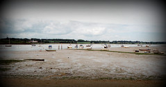 Manningtree Beach (thestourman) Tags: sea england beach river olympus stylus essex epic stour manningtree