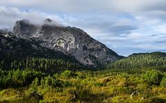Bayerns letzte Wildnis (chrispenker) Tags: 2016 alpen berge reitealpe sommer berchtesgaden reisen