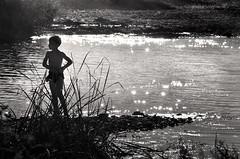 d'ombre e luci (pamo67) Tags: pamo67 shadowsandlight riva shore silhouette ragazzo boy luccichio glitter riflessi reflections acqua water guado ford estate summer luci lights erba grass fili wires blackwhite bn bw outdoors mare sea pasqualemozzillo