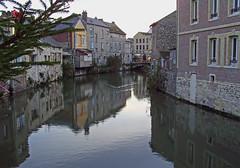 SNB10649- Harfleur France (Rolye) Tags: france tree yahoo google samsung rivière arbre ops sapin lehavre harfleur seinemaritime lézarde nv7 rolye