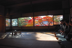 Shouden villa (kaycatt*) Tags: autumn japan garden autumncolors uji  kyoto