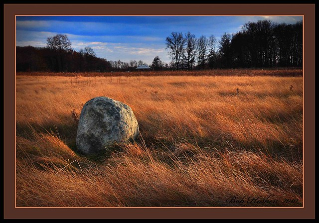 A Rock at Glacier Ridge by bob from dublin