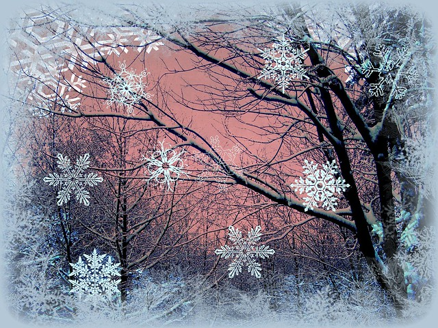 Pink Sky at night, snowy day