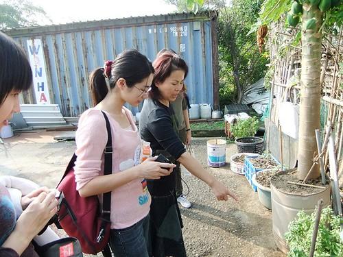 秀琴姐帶我們到被保住的菜園,跟我們介紹她剛種下的盆栽 ,拍攝日期11月21日