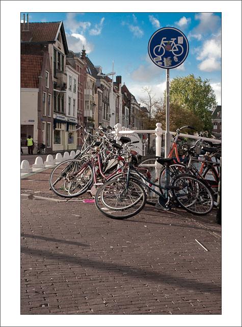 leidse fietsen_