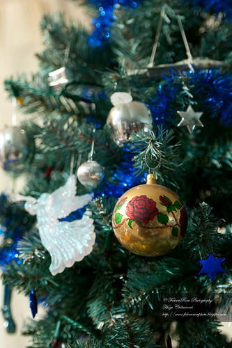 12-07-2010_ornaments_wm