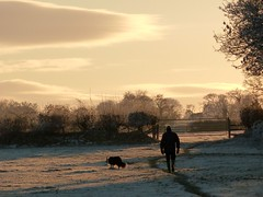 Almost sunset (amy's antics) Tags: trees winter sunset dog man field walking gate frost path hedge stile