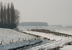 Brabants winterlandschap - Dutch winter landscape (RuudMorijn) Tags: schnee trees winter snow cold netherlands dutch fence landscape haze rboles frost ditch hiver nieve sneeuw curves paisaje paisagem arbres neve holanda porte invierno cerca neige paysage zaun inverno landschaft bume zigzag pases jos gard landschap rvores 2010 niederlande hek noordbrabant ijs  graben vala bajos  zanja iarna  copaci zapada  holands  peisaj drimmelen holands        nerlandaise hollndischen   an olandez rile