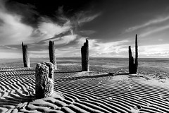 No Country for Old Men (Christopher J. Morley) Tags: bw beach vancouver landscape sand bc 5 bad monotone richmond iona ripples pilings barren achromatic nocountryforoldmen