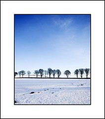 Scottish Winter Scene with Line of Pretty Trees and Some  Cool Blue Too (Magdalen Green Photography) Tags: blue snow landscape cool pretty snowscene coolblue lineoftrees scottishwinter dsc6474 iaingordon scottishwinterscenewithlineofprettytreesandsomecoolbl scottishwinterscenewithlineofprettytreesandsomecoolbluetoo