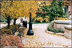 (ChiDN) Tags: autumn fall fallcolors olympus littleitaly om2n olympusomsystemzuikoautosf1850mm