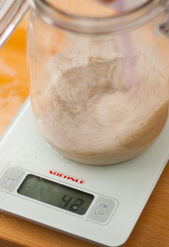 isco fermento sourdough starter balança