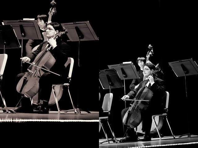 brotherface cello diptych