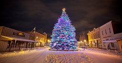 Oh Christmas Tree (Ryan C Wright) Tags: christmas winter snow storm mountains cold tree lights mainstreet colorado downtown skiing snowy christmastree songs crestedbutte gunnison ryanwright ryanwrightphotography httpryanwrightphotophotosheltercom