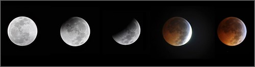 Winter Solstice Lunar Eclipse