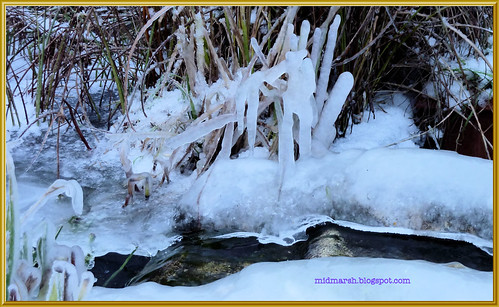 Icy Pond Waterfall 2