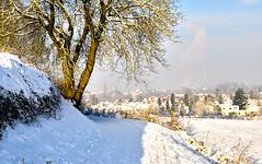 _DSC1057-2 (mosmar) Tags: snow maastricht landscape day sneeuw landschap nikond90
