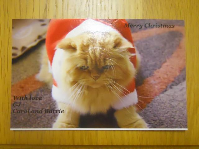 Christmas 2010 (23)