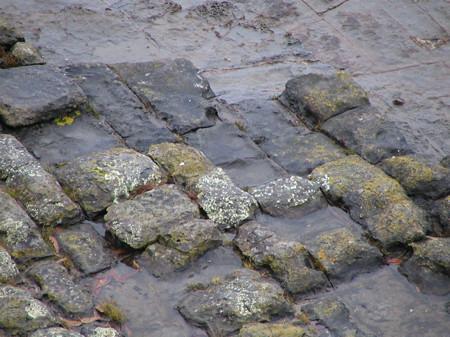 Naturally occuring bricks