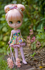 up the garden path (JennWrenn) Tags: pink flowers ribbons doll babies spots blythe mim gardenpath kewpies stellasavannah
