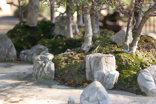 Penjing - miniture landscapes.