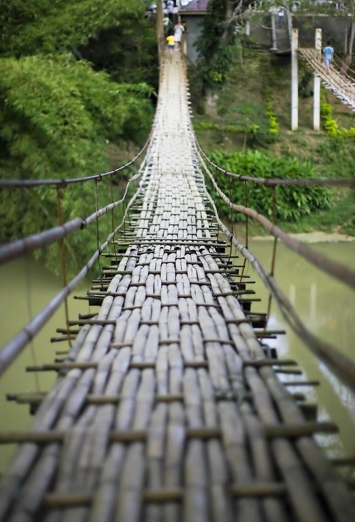 IMAGE: http://farm6.static.flickr.com/5041/5353806608_8af56d02a2_b.jpg