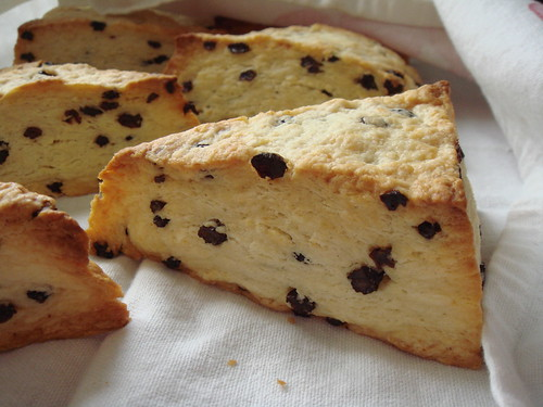 Flaky Currant Scones