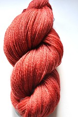 SCF-club May 2010-Polwarth-Tencel-2ply-4oz-609yds-3