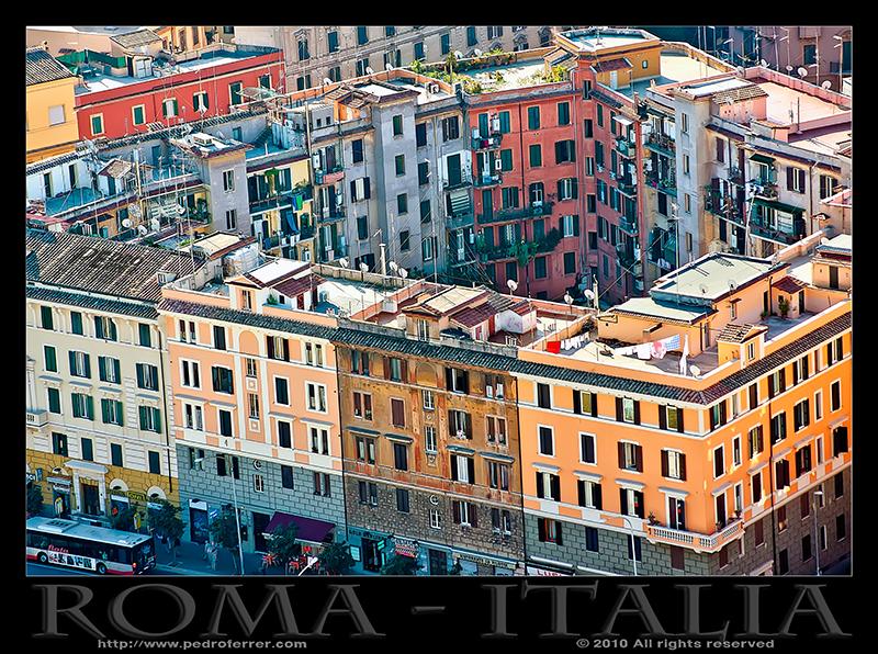 Roma - La colmena