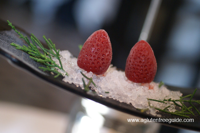 Frozen Strawberry Bellini at El Bulli Restaurant Menu (10)