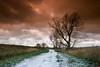 "unloving (D.Reichardt) Tags: winter sky tree nature weather clouds germany way landscape europe december filter cokin notherngermany unloving ""flickraward"" norddeutschlend"