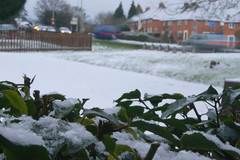 Snow in Car Park at Highwayman Oswestry (chrisbell50000) Tags: park winter house snow cold public car bush pub foliage hedge oswestry marstons highwayman chrisbellphotocom
