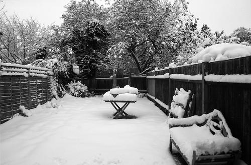 Snow-Nov_10_6