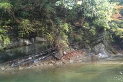 粟又の滝 自然遊歩道 地層好きにはたまらない