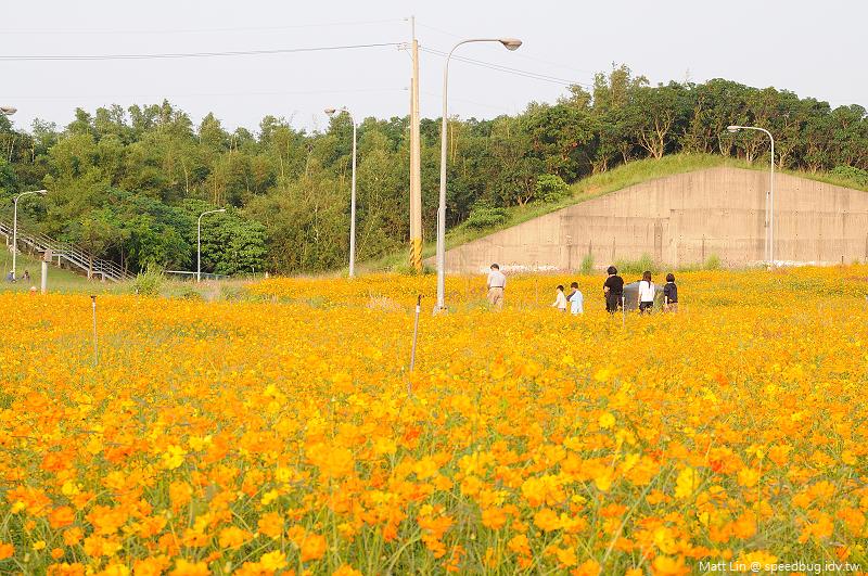 孔宅綠園 (23).jpg